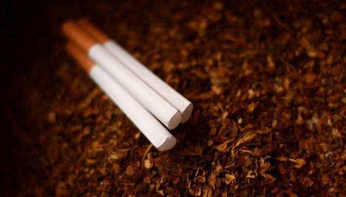 Tytoń 3