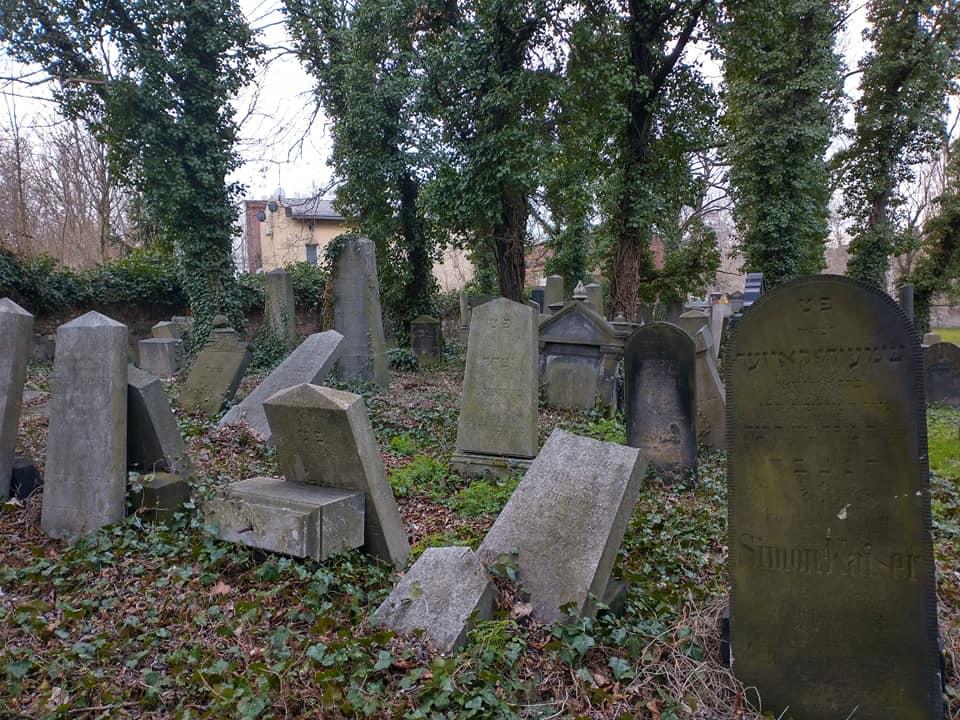 cmentarz żydowski4